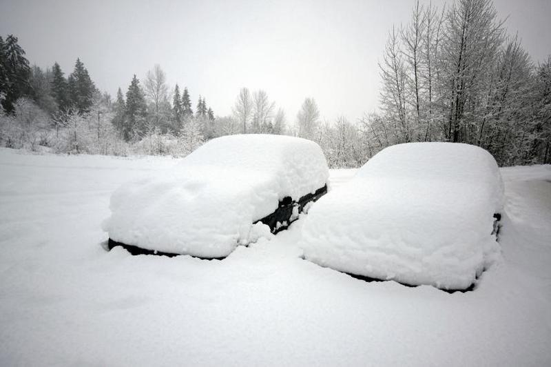 Auto's in sneeuw
